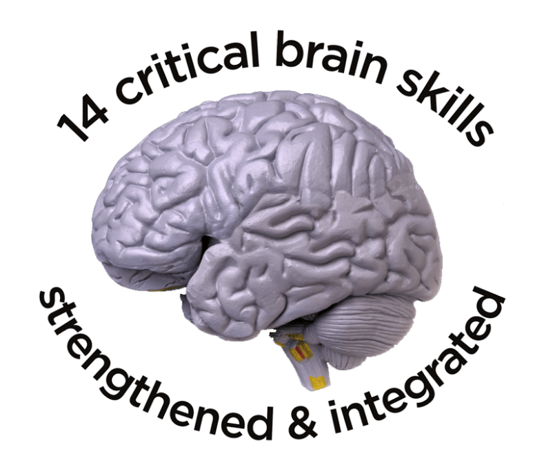 14 brain skills