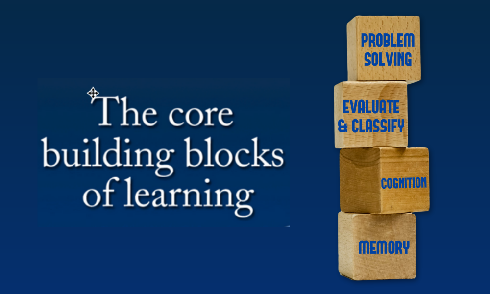 brain fitness and learning building blocks