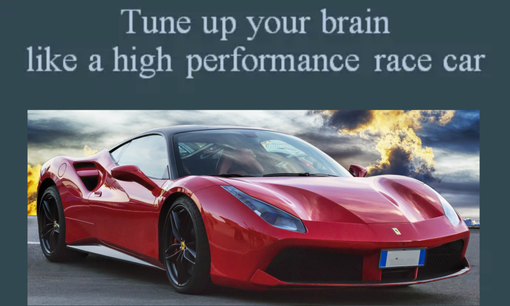 brain fitness and learning high performance